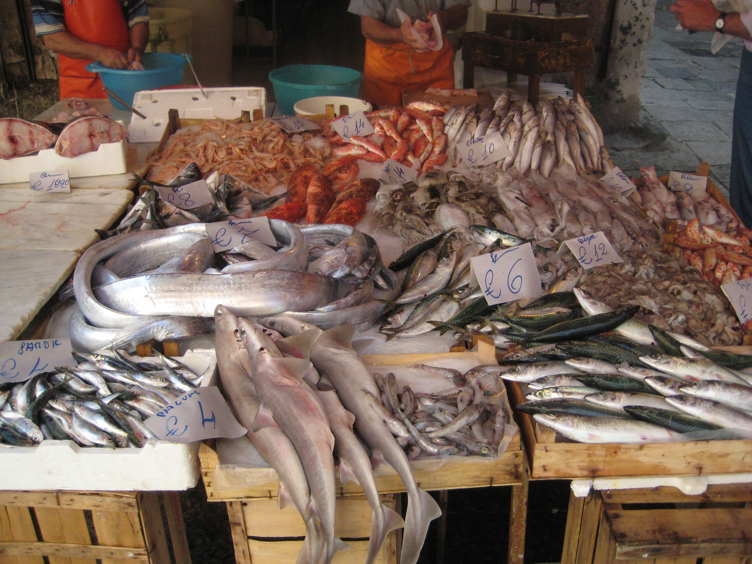 Fish Market Related Keywords & Suggestions - Fish Market ...